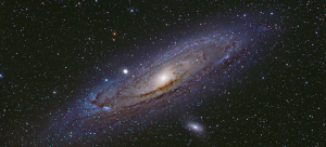 A river runs through it: galaxy behavior under environmental mechanisms